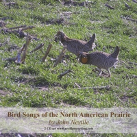 John Neville | Bird Songs of the North American Prairie