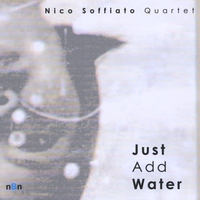 Nico Soffiato Quartet | Just Add Water