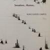 Nuno Guedes Campos Trio: Sensations... Illusions...
