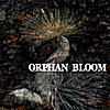Orphan Bloom: Orphan Bloom