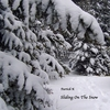 Patrick K: Sliding On The Snow