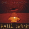 Paul Cebar: One Little Light On