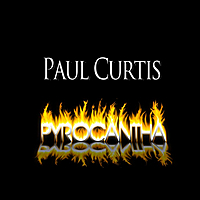 Paul Curtis: Pyrocantha