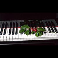 Christmas Piano.Paul Taylor My Christmas Piano Cd Baby Music Store