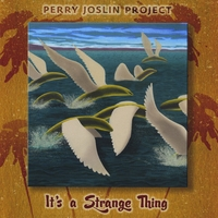 Perry Joslin | It's A Strange Thing