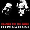 Picus Maximus: Lullabies for the Cursed