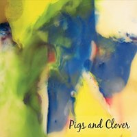 Pigs and Clover | Pigs and Clover