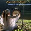 Ping Xu: Magical Dream Travels