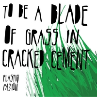 Plastiq Passion | To Be A Blade of Grass In Cracked Cement