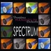 PROVIDENCE MANDOLIN ORCHESTRA: Spectrum