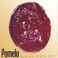 Pomelo | Are We There Yet?
