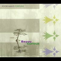 Poor Man's Fortune | Bayou Curious