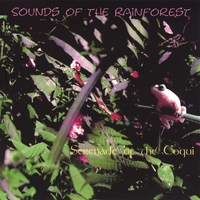 Sounds of the Rainforest | Serenade of the Coquis