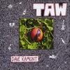 Dave Ramont: Taw