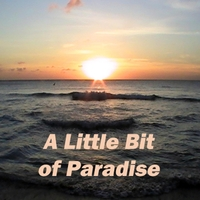 Randy and the Retreads | A Little Bit of Paradise