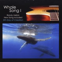 Randy Melick | Whale Song I