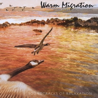 Randy Vild's Orchestrations | Warm Migration