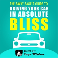 Kyle Hoobin | The Savvy Sage's Guide to Driving Your Car in Absolute Bliss