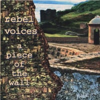 Rebel Voices | A Piece of the Wall