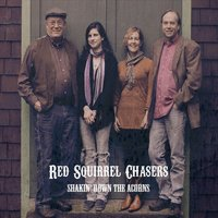 Red Squirrel Chasers | Shakin' Down the Acorns