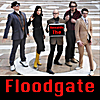 Renaldo The: Floodgate