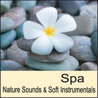 Nature Sounds Artists | Spa: Nature Sounds & Soft Instrumental Music