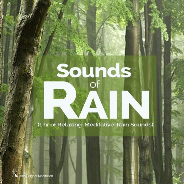 Rising Higher Meditation | Sounds of Rain (1hr of Relaxing
