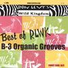 RON LEVY'S WILD KINGDOM: Best Of Rlwk - B-3 Organic Grooves