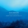 Robert Thies: Blue Landscapes