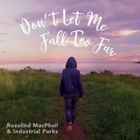 Rozalind MacPhail & Industrial Parks | Don't Let Me Fall Too Far
