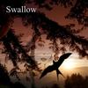 Ryo Utasato: Swallow