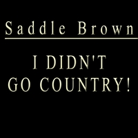 Saddle Brown | I Didn't Go Country!