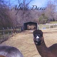 Album Alpaca Dance by Lex Samu