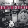 JOHN SCHOTT: Typical Orchestra