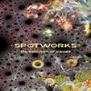 SCOTT DRAVES: Spotworks Dvd