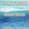 Suzanne Doucet, Chuck Plaisance: Ocean Waves (Pure Nature Sounds)