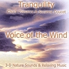 Suzanne Doucet, Chuck Plaisance: Voice Of The Wind (TRANQUILITY SERIES)