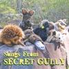 Secret Gully: Songs from Secret Gully