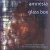 JONATHAN SEGEL: amnesia glass box
