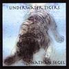 JONATHAN SEGEL: Underwater Tigers