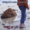 Serious-Music: Stones Of Life