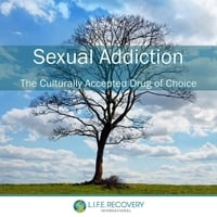 Various Artists | Sexual Addiction: The Culturally Accepted Drug of Choice