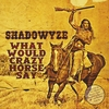 Shadowyze: What Would Crazy Horse Say