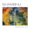 Shambhu: Dreaming of Now