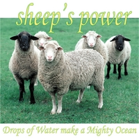 Sheep's Power | Drops of Water Make a Mighty Ocean
