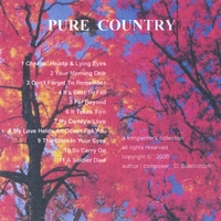 The Pure Country Band | Pure Country
