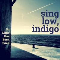 Sing Low, Indigo | So Little Has Been Tried