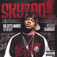 "The image ""http://cdbaby.name/s/k/skyzoo.jpg"" cannot be displayed, because it contains errors."