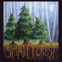 Small Forest | Dream