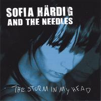 SOFIA HÄRDIG and the needles | The Storm In My Head